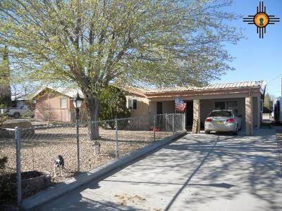 Sierra County Single Family Home For Sale: 111 Huron