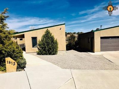 Gallup Single Family Home For Sale: 1813 Monterey Court