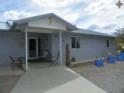 Sierra County Single Family Home For Sale: 89 S Lost Canyon Drive