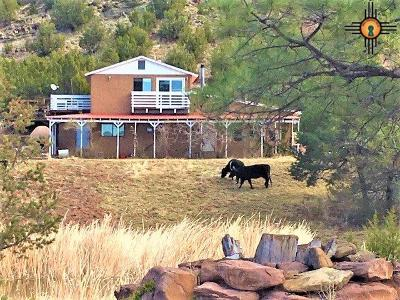 Las Vegas Single Family Home For Sale: 1249 & 1253 Us Hwy 84