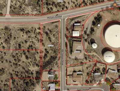 Residential Lots & Land For Sale: Tbd Kit Carson Dr.