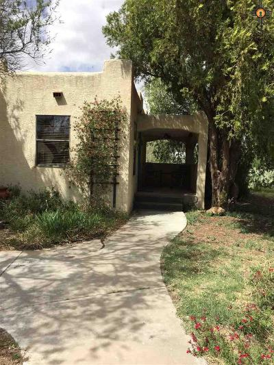 Carlsbad Single Family Home For Sale: 217 N Fourth