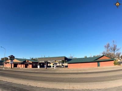Roosevelt County Commercial For Sale: 1604 S Ave. D