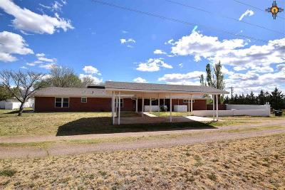 Roosevelt County Single Family Home For Sale: 427 S Roosevelt Road P 1/2