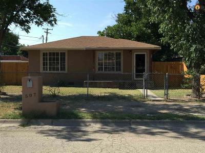 Carlsbad Multi Family Home For Sale: 507 & 507 1/2 Irvin