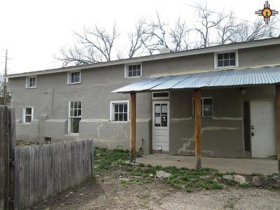 Las Vegas Single Family Home For Sale: 1502 South Pacific