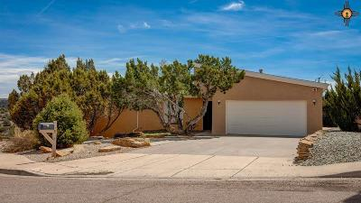 Gallup Single Family Home For Sale: 1814 Monterey Court