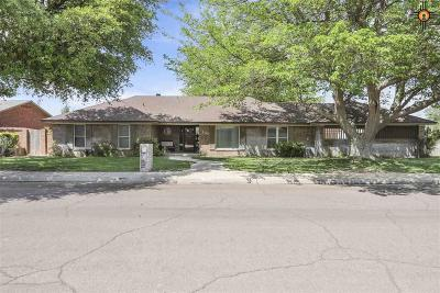 Hobbs Single Family Home For Sale: 100 W Wolfcamp