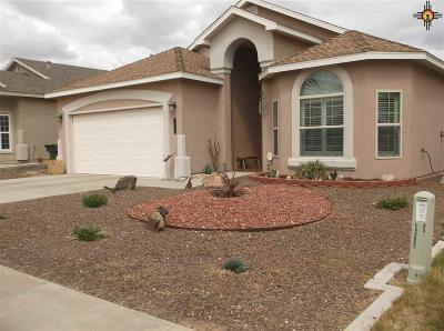 Carlsbad NM Single Family Home For Sale: $292,500