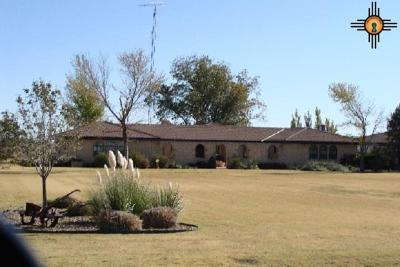 Portales Single Family Home For Sale: 907 S Kilgore
