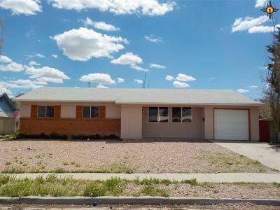 Gallup Single Family Home For Sale: 609 Zecca Drive