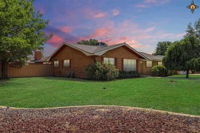 Hobbs Single Family Home For Sale: 101 W Silver