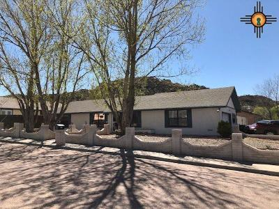 Gallup Single Family Home Active, U/C-Take Back Ups: 510 Aztec Ct