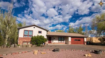 Gallup Single Family Home For Sale: 1705 Red Rock