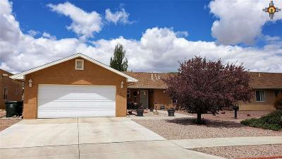 Gallup Single Family Home Under Contract-Don't Show: 3054 W Pueblo Ct