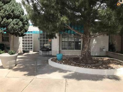 Hobbs NM Condo/Townhouse For Sale: $175,000