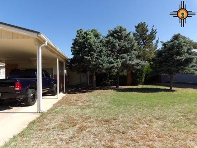 Single Family Home For Sale: 208 E Mesa