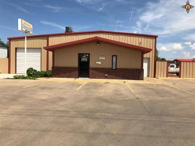 Curry County Commercial For Sale: 1209 N Mlk Blvd