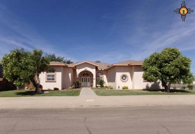 Deming Single Family Home For Sale: 1100 S Shelly