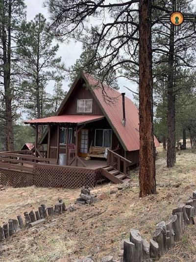 Catron County Single Family Home For Sale: 21 Arizona Drive