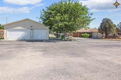 Hobbs Single Family Home For Sale: 804 W Morales