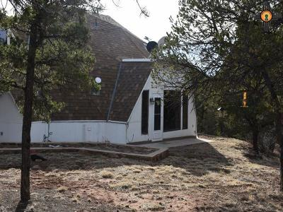 Las Vegas Single Family Home For Sale: 61 Coyote Rd