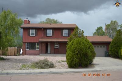 Gallup Single Family Home For Sale: 2004 Mountain View