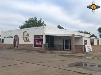 Roosevelt County Commercial For Sale: 201 N Chicago