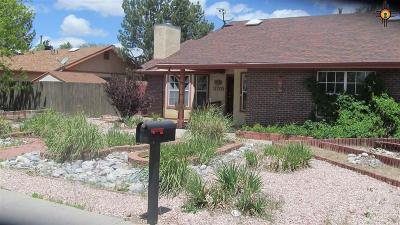 Gallup Single Family Home For Sale: 3715 Chaco