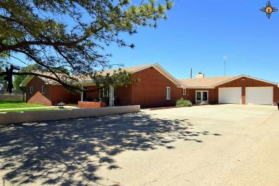 Portales Single Family Home For Sale: 476 S Roosevelt Rd W