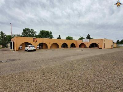Clovis NM Commercial For Sale: $213,500