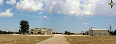 Curry County Commercial For Sale: 583 Us Highway 70