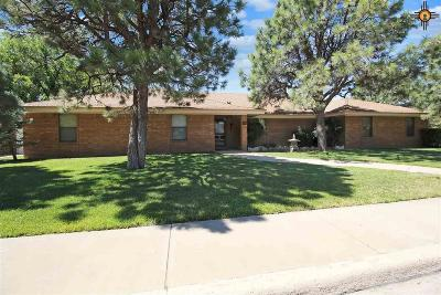 Hobbs Single Family Home For Sale: 213 E Jemez