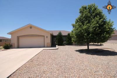 Portales Single Family Home For Sale: 101 N Ave R