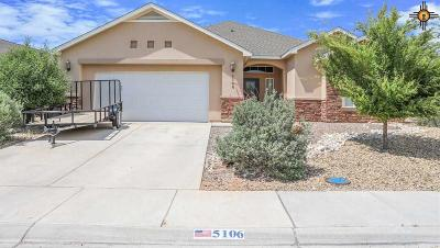 Hobbs NM Single Family Home For Sale: $295,000