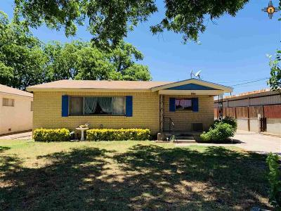 Carlsbad Single Family Home For Sale: 1031 N Spring St