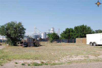Portales Residential Lots & Land For Sale: 314 E Kaywood