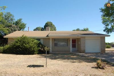 Portales Single Family Home For Sale: 221 E University