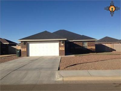 Single Family Home For Sale: 508 Almond Tree Ln