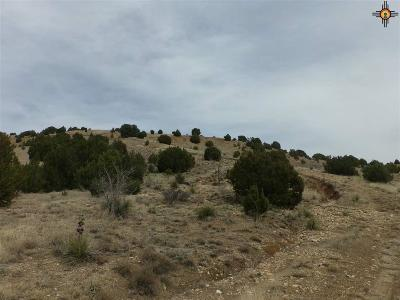 Las Vegas Residential Lots & Land For Sale: 21 North Road