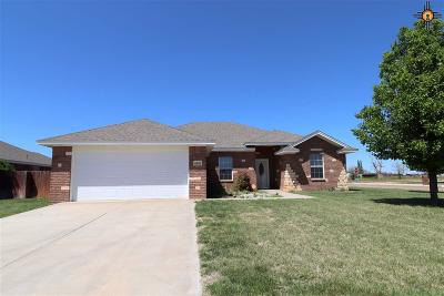 Single Family Home For Sale: 4408 Sandstone Dr.