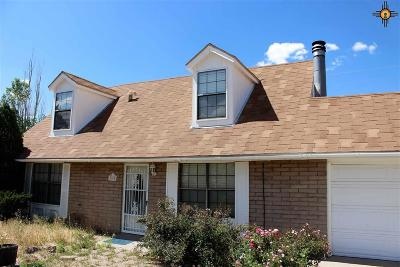 Gallup Single Family Home For Sale: 1908 Mountain View Drive