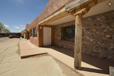 Las Vegas Condo/Townhouse For Sale: 1151 Grand Avenue