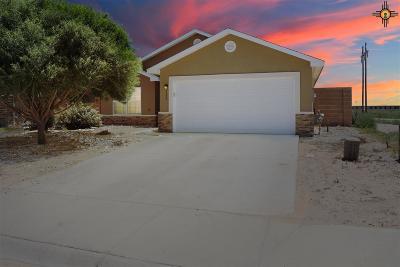 Hobbs Single Family Home For Sale: 4522 N Backstretch Rd
