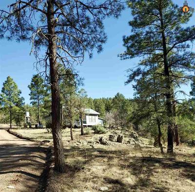 Sierra County Single Family Home For Sale: Lot 2 Black Range Heights