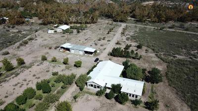 Sierra County Single Family Home For Sale: 320 Animas Creek