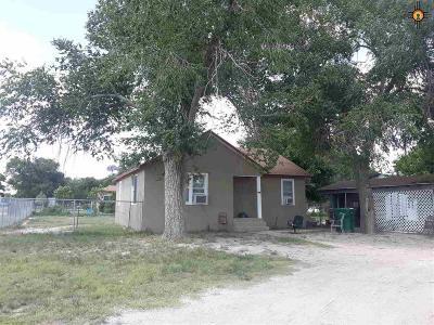 tatum Single Family Home For Sale: 705 E 2nd St.