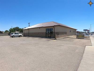Clovis Commercial For Sale: 1633 N Prince Street