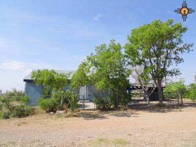 Deming Single Family Home For Sale: 420 Kansas St