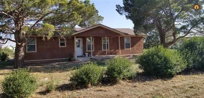 Hobbs NM Single Family Home For Sale: $192,500